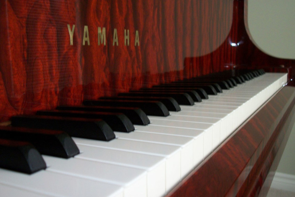 musicians injuries occupational therapy workshops